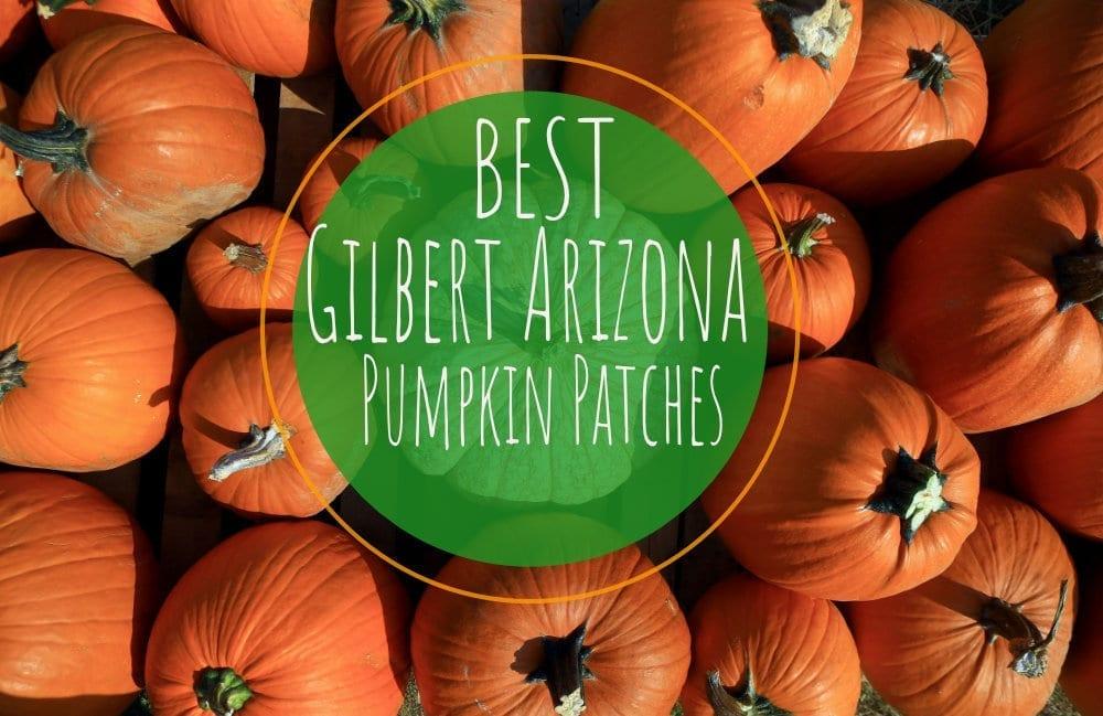 Gilbert Pumpkin Patch Locations